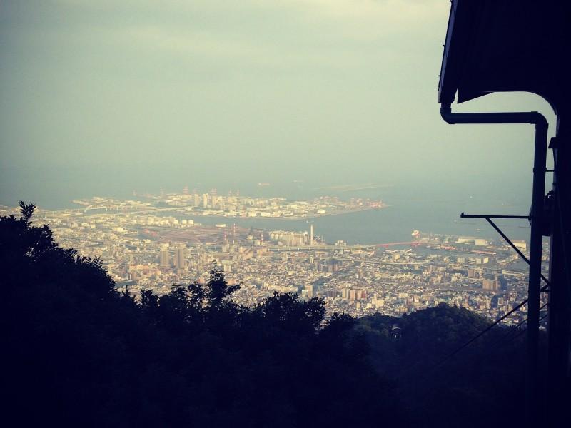 イベントを開催する理由~神戸の山を守るために
